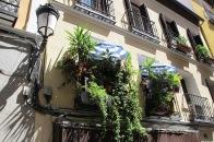 balcones frondosos