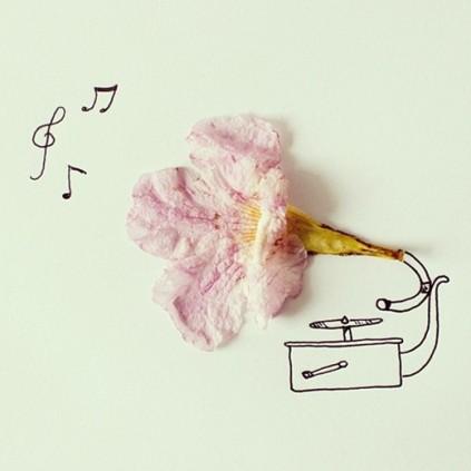 Flower gramophone © Cintascotch