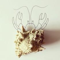 A hermit crab © Cintascotch
