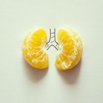 Satsuma lungs © Cintascotch